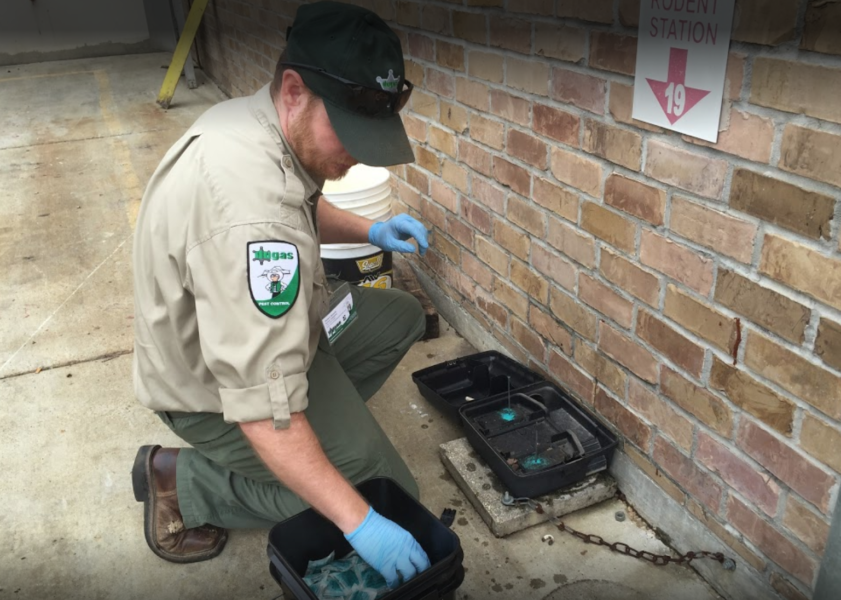 Dugas Pest Control setting rodent traps at commercial property